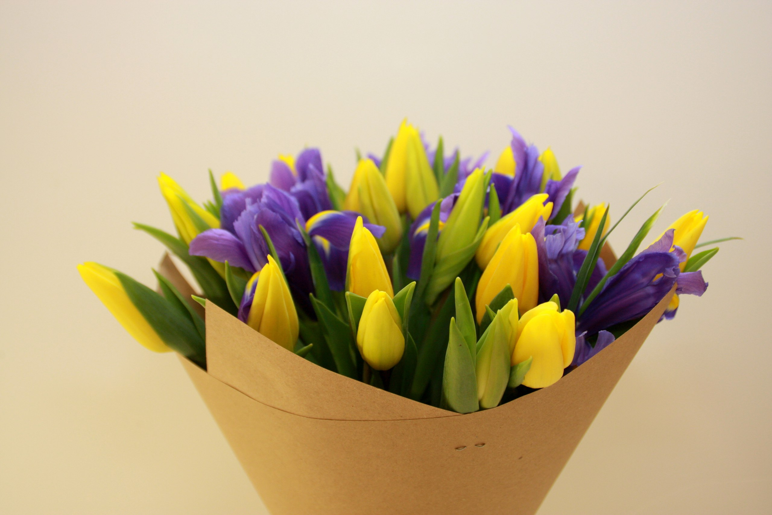 камин букет тюльпаны ирисы картинки можете приобрести