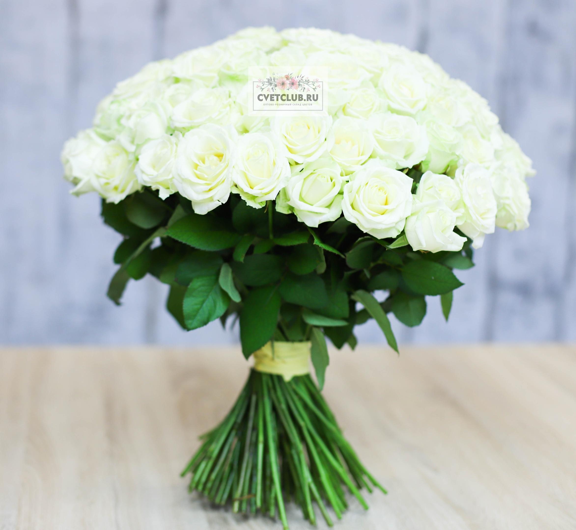 Цветов, 101 роза оптом салават