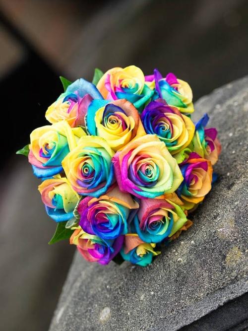 Букет невесты из цветных роз фото